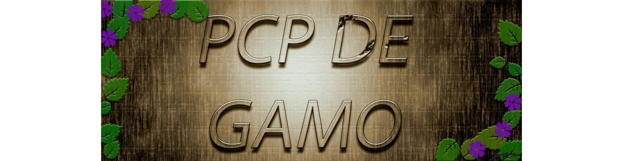 gamo pcp