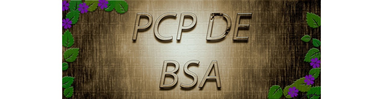 bsa pcp