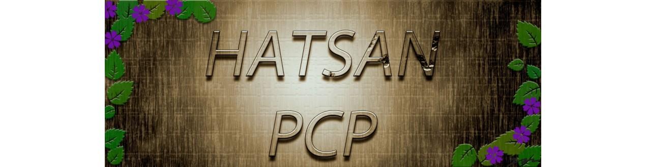 hatsan pcp
